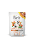 BRIT ANIMALS ALFALA RODENTS - 100G