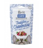 BRIT CARE Chat - Juicy Snack - Bouchées aux cranberries (50 g)