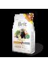 BRIT ANIMALS Ferret - Aliment pour furets (700g) DLUO 07/2020