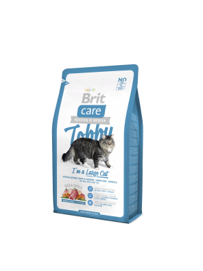 BRIT CARE CAT Tobby, chats de grande taille