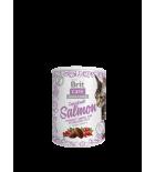 BRIT CARE CAT Snack Superfruits Salmon au saumon 100 g