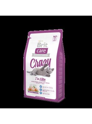 BRIT CARE CAT Crazy, spécial chatons
