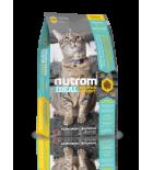 Nutram Ideal I12 pour chats avec besoin de contrôle de poids