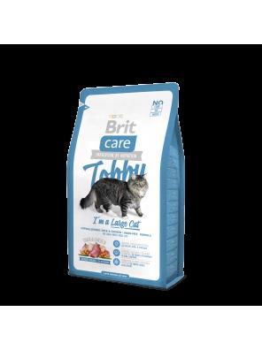 BRIT CARE CAT Tobby, chats de grande taille